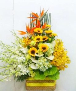 giỏ hoa tươi 18