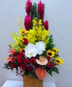 giỏ hoa tươi 20