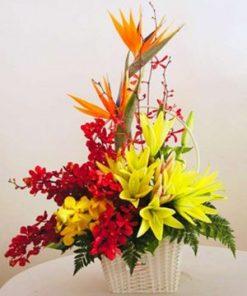 giỏ hoa tươi 22