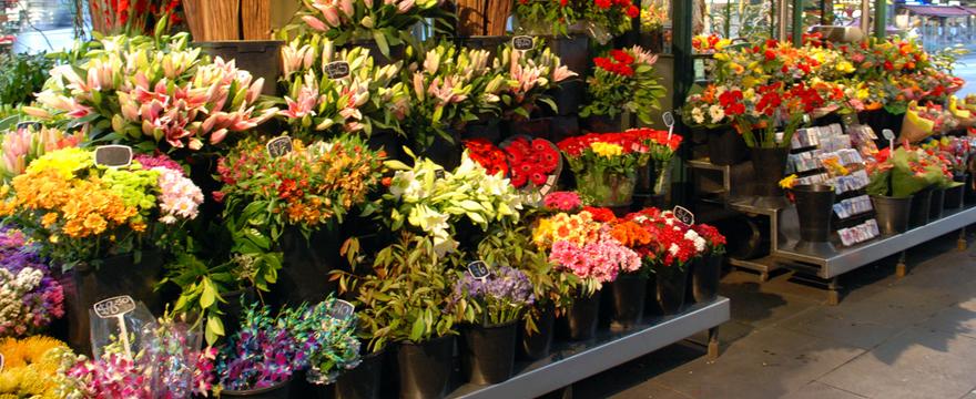 hoa tươi 365 dịch vụ hoa tươi