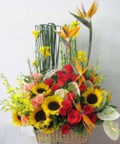 giỏ hoa tươi 33
