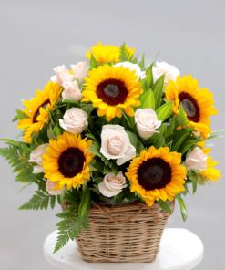 hoa sinh nhật - 60