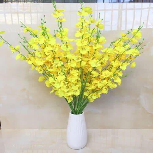 hình ảnh hoa lan vũ nữ